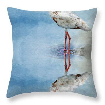 Ibis Throw Pillow by Cyndy Doty