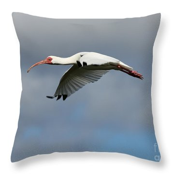 Ibis In Flight Throw Pillow by Carol Groenen