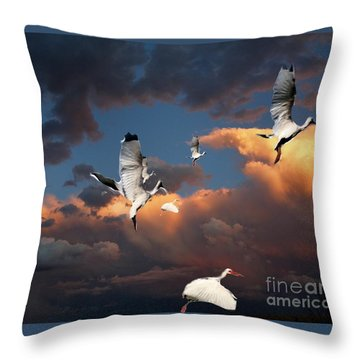 Throw Pillow featuring the photograph Ibis In Flight by Irma BACKELANT GALLERIES