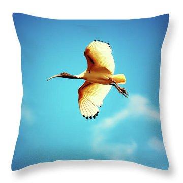 Ibis Of Light Throw Pillow