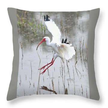 Ibis Soft Water Landing Throw Pillow by Carol Groenen
