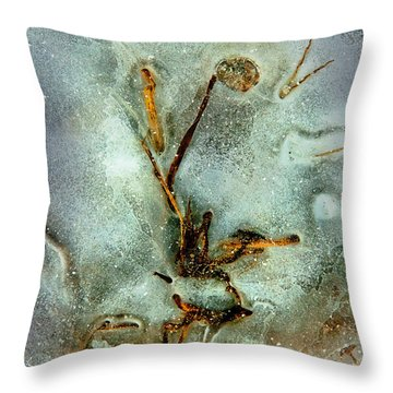 Ice Abstract Throw Pillow