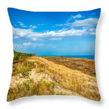 Ice Age After Noon Throw Pillow