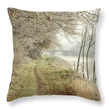 Ice And Mist Throw Pillow