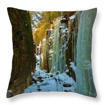 Ice At The Flume Throw Pillow