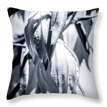 Throw Pillow featuring the photograph Ice Ball by Stwayne Keubrick