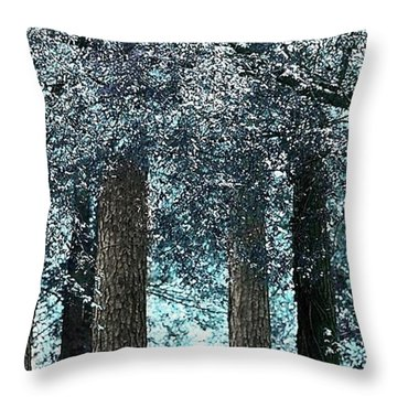 Ice Blue Arch Throw Pillow by Ellen O'Reilly