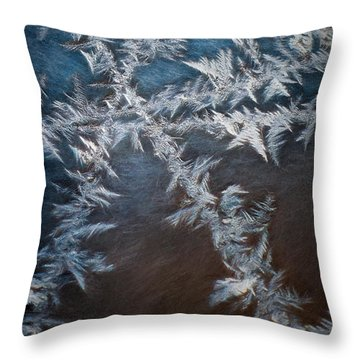 Ice Crossing Throw Pillow