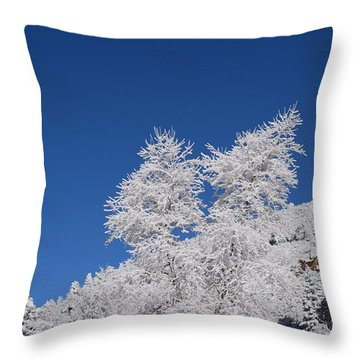 Ice Crystals Ute Pass Cos Co Throw Pillow