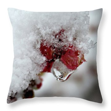 Ice Drip Throw Pillow