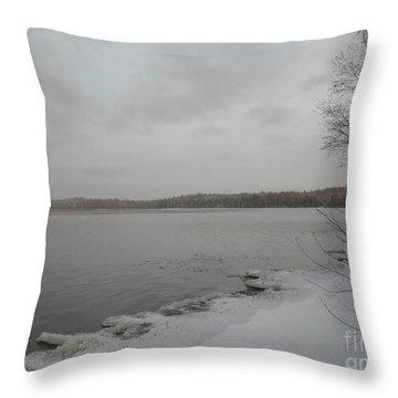 Ice Edge Throw Pillow