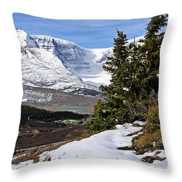Ice Fields Throw Pillow