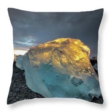 Ice Fish Throw Pillow by Allen Biedrzycki