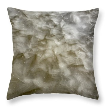 Ice Formations During The Winter Months Throw Pillow by Erin Paul Donovan