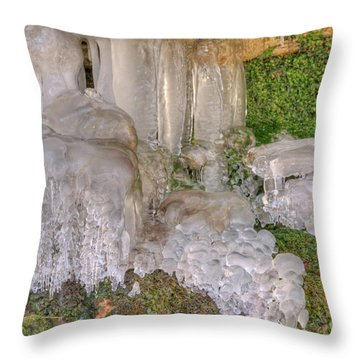 Throw Pillow featuring the photograph Ice Formations by Wanda Krack