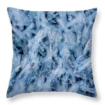 Ice Grass Growing Throw Pillow
