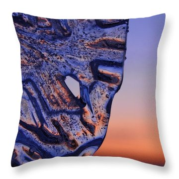 Ice Lord Throw Pillow by Sami Tiainen