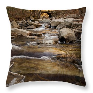 Ice On Stickney Brook Throw Pillow