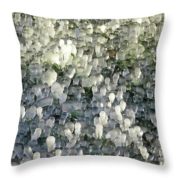 Ice On The Lawn Throw Pillow