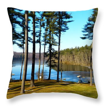 Ice On The Water Throw Pillow by Donald C Morgan