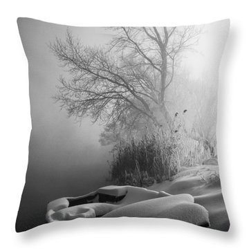 Ice Pier Throw Pillow