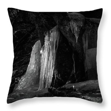 Throw Pillow featuring the photograph Icicle Of The Forest by Tatsuya Atarashi