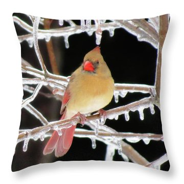 Ice Princess Throw Pillow by MTBobbins Photography