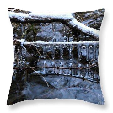 Ice Rake Throw Pillow