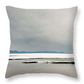 Ice Sheet Throw Pillow