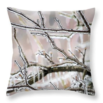 Ice Storm Ice Throw Pillow by Craig Walters