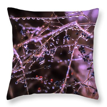 Throw Pillow featuring the photograph Ice Storm by Richard Goldman