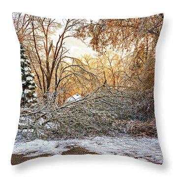 Ice Storm...day 2 Throw Pillow by Steve Harrington