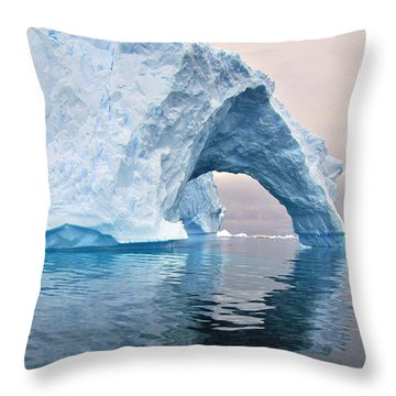 Iceberg Alley Throw Pillow by Tony Beck