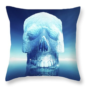 Iceberg Dangers Throw Pillow