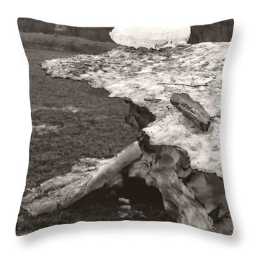 Iceberg Silo Throw Pillow by Heather Kirk