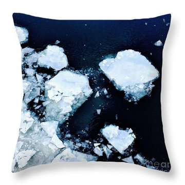 Iced Beauty #1 Throw Pillow