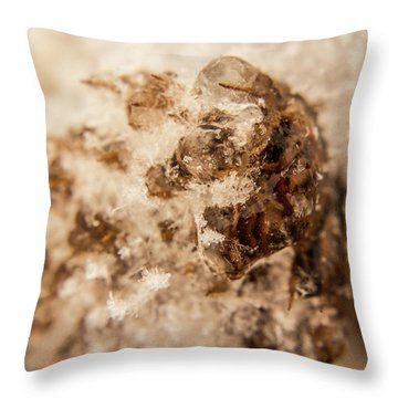 Throw Pillow featuring the photograph Iced Out by Tyson Kinnison