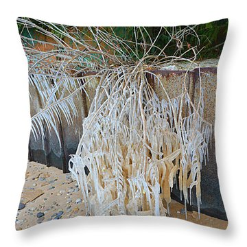 Throw Pillow featuring the photograph Iced Over by SimplyCMB