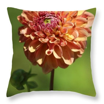 Iced Tea Dahlia In Marzipan And Milano Tones Throw Pillow