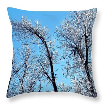 Iced Trees Throw Pillow by Craig Walters