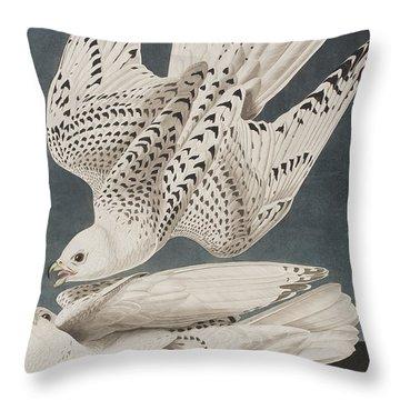 Iceland Falcon Or Jer Falcon Throw Pillow by John James Audubon