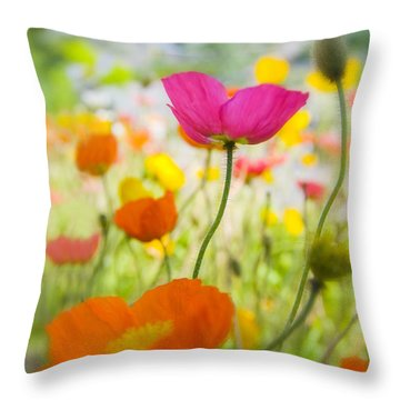 Iceland Poppies Throw Pillow by Silke Magino