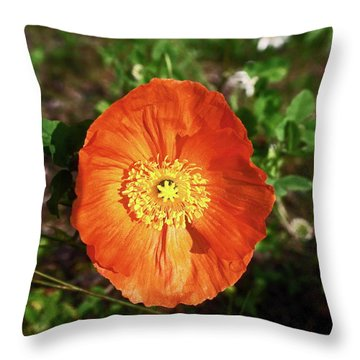 Iceland Poppy Throw Pillow by Sally Weigand
