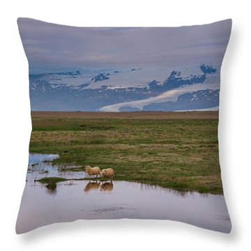 Throw Pillow featuring the photograph Iceland Sheep Reflections Panorama  by Michael Ver Sprill