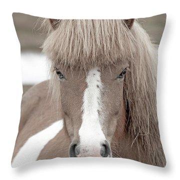 Icelandic Treasure Throw Pillow