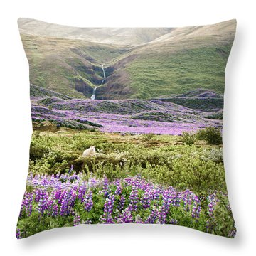 Icelandic Treasures Throw Pillow by William Beuther