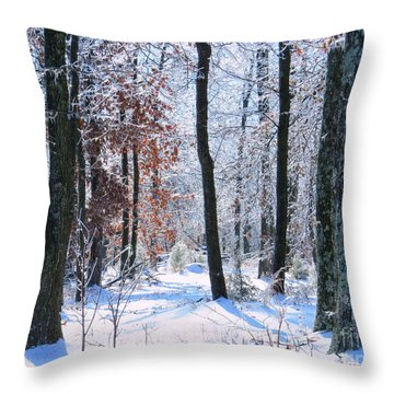 Icey Forest 1 Throw Pillow by Craig Walters