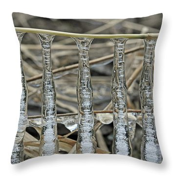 Throw Pillow featuring the photograph Icicles On A Stick by Glenn Gordon