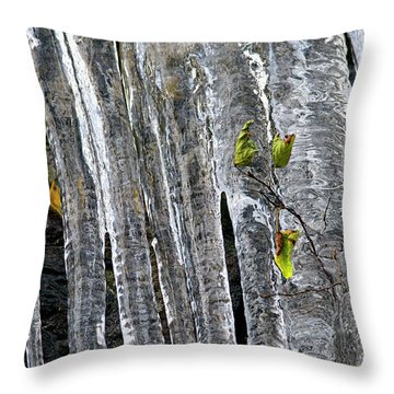 Throw Pillow featuring the photograph Icicles by Sharon Talson