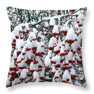 Throw Pillow featuring the digital art Icing On The Cake 2 by Will Borden